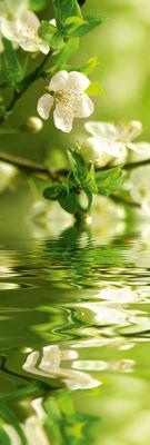 Фотообои Весна артикул 110011
