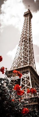 Фотообои Очарование Парижа артикул 110020