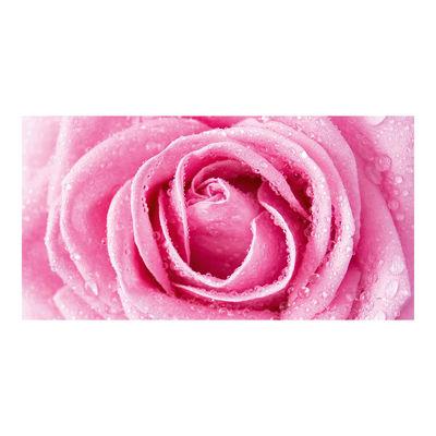 Фотообои Розовое совершенство артикул 230050
