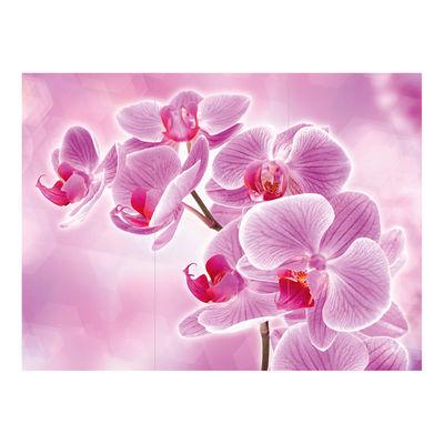 Фотообои Орхидея артикул 250136