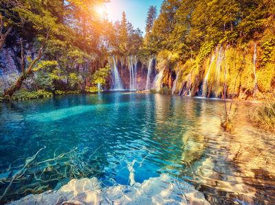 Фотообои Лесной водопад артикул 250374