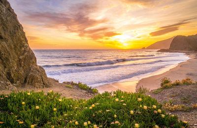 Фотообои Пляж и море артикул LA230529