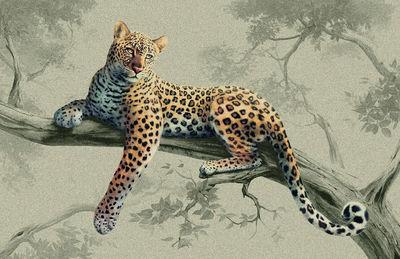Фотообои Леопард на дереве артикул LA230531