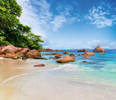 Фотообои Пляж и камни артикул LA250559
