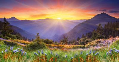 Фотообои Рассветный пейзаж артикул YW230060